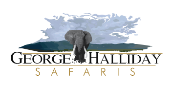 George Halliday Safaris Logo